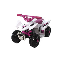 Electric Ride-On Mini Quad Bike 6 Volt Ride On Boys ATV Style Quality Product