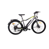 Universal Electric Bicycle 250W 36V 10.4Ah Li-Ion Battery Sw-Lcd Display Hydraulic Brakes 26X2.10 Gents