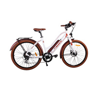 Universal Electric Bicycle 250W 36V 10.4Ah Li-Ion Battery Sw-Lcd Display Hydraulic Brakes 26X2.10 Ladies
